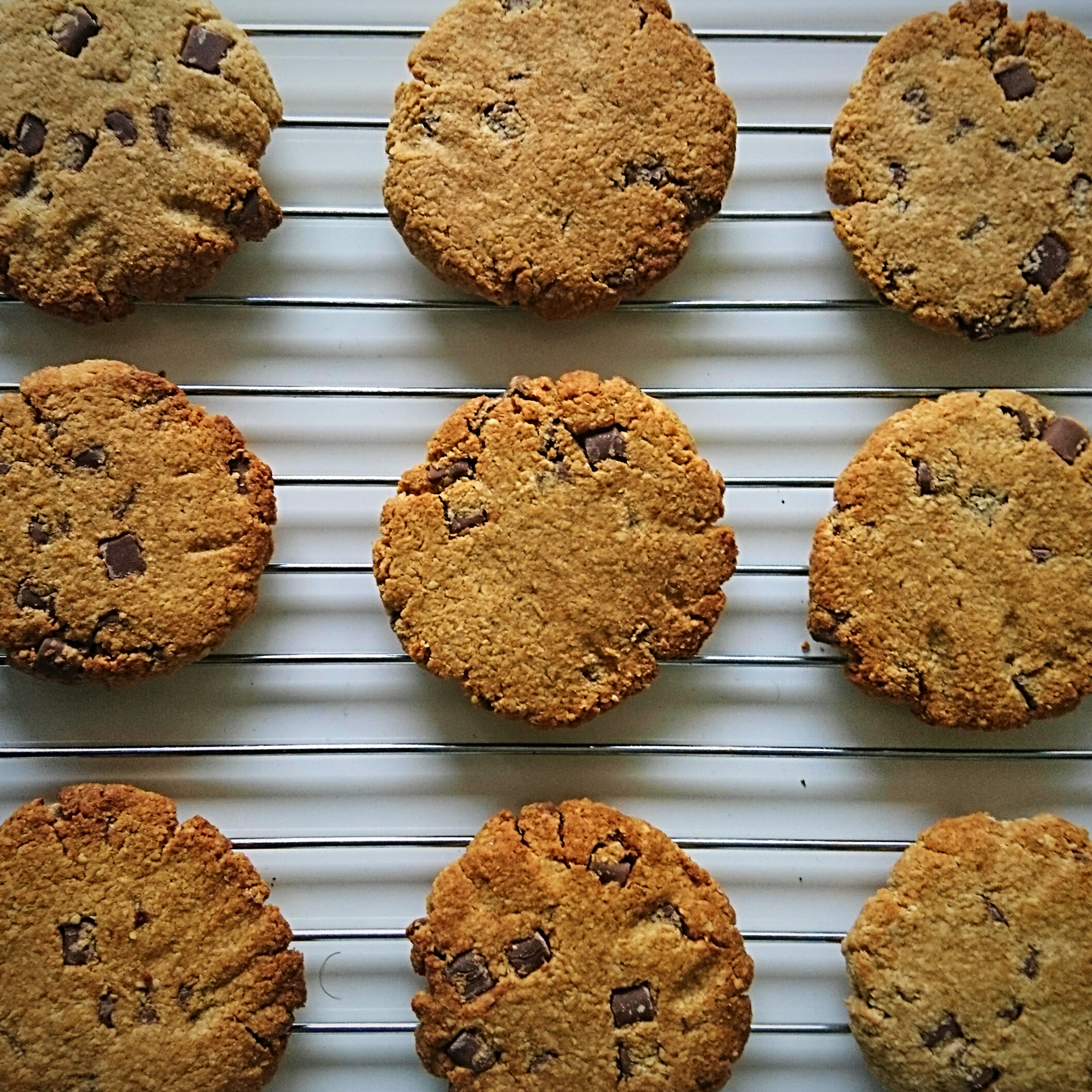 chocolate-chip-cookies-milena-kaler
